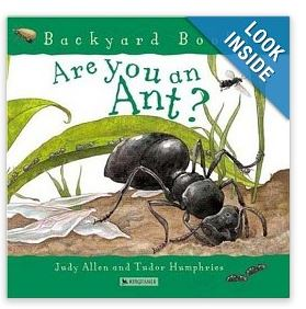 are you an ant