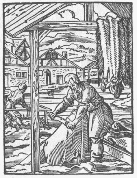 Lederer-1568