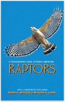 Raptor book 2