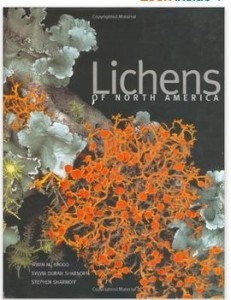 lichen book