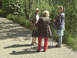 Johnny Soderberg Flicker trekking poles