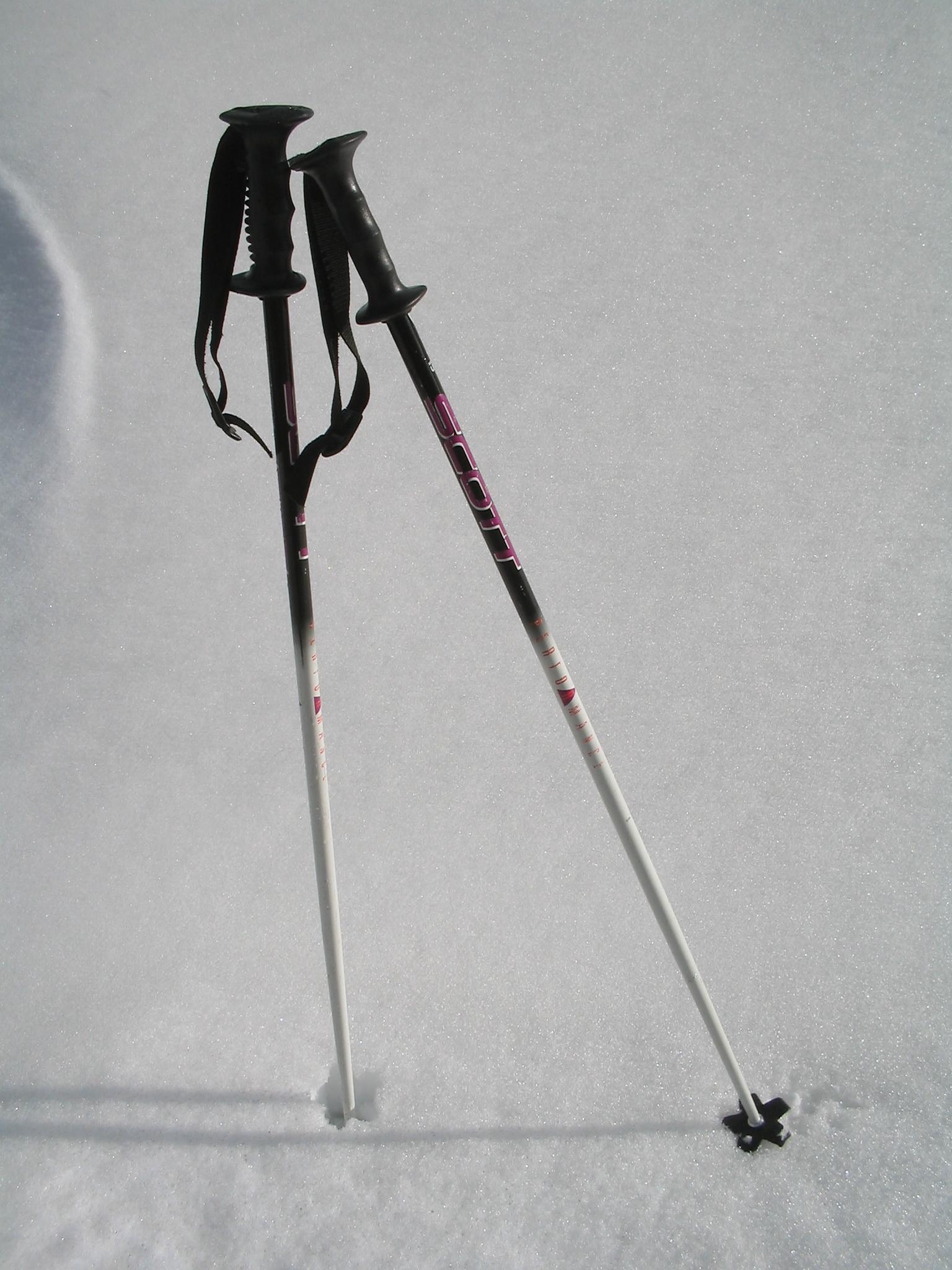 Ski_poles wiki