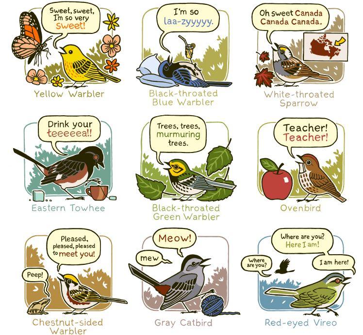 bird pneumonic sounds