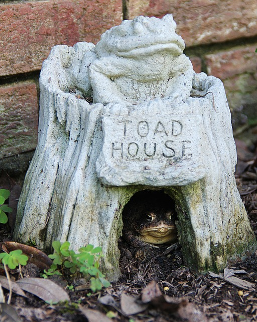 Merveilleux Toad Houses: Fun And Useful For The Garden