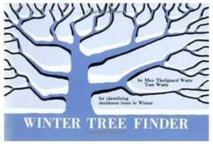 winter tree book