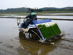 Rice-planting-machine_2,katori-city,japan